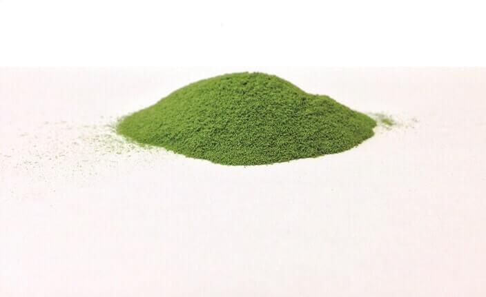 チロシンとその他栄養素をバランスよく摂るなら藻(も)サプリメントがオススメ